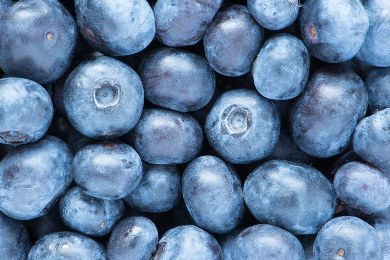 antioxidant-containing blueberries