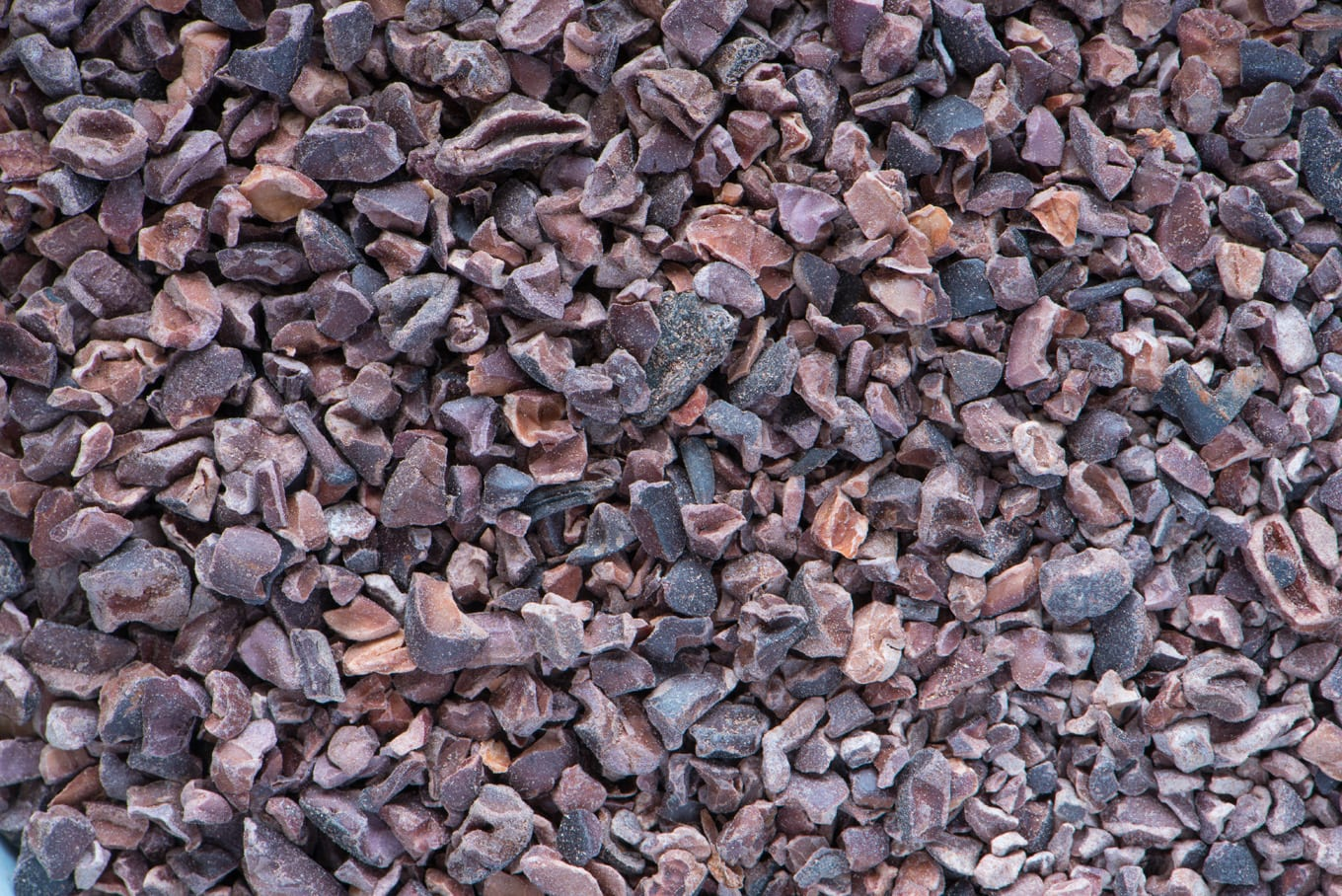 antioxidant containing cacao nibs