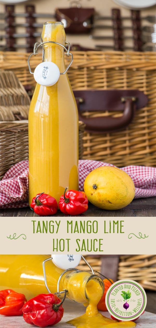 tangy mango lime hot sauce in bottles Pinterest image